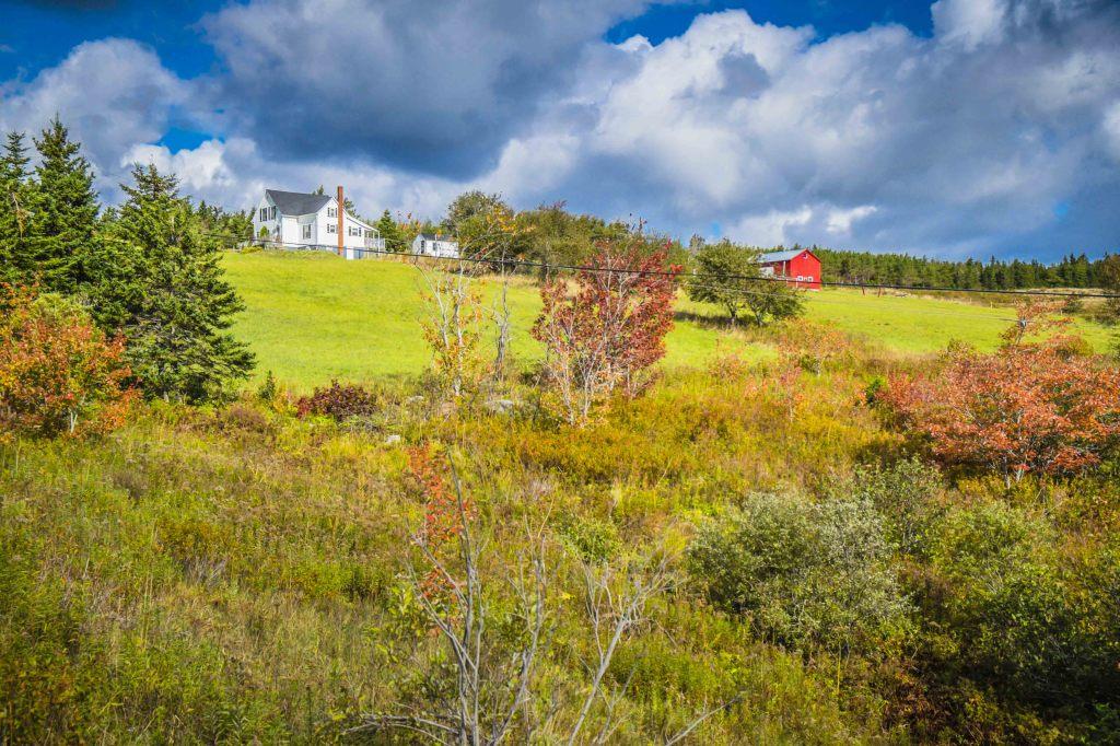 Cape Breton PAstoral