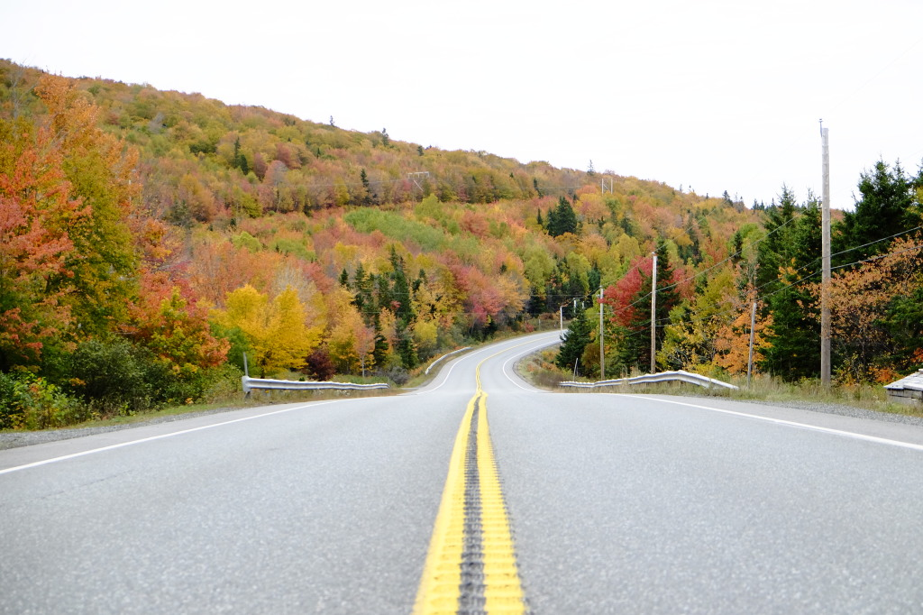 Fall Colours TCH near Baddeck, NS