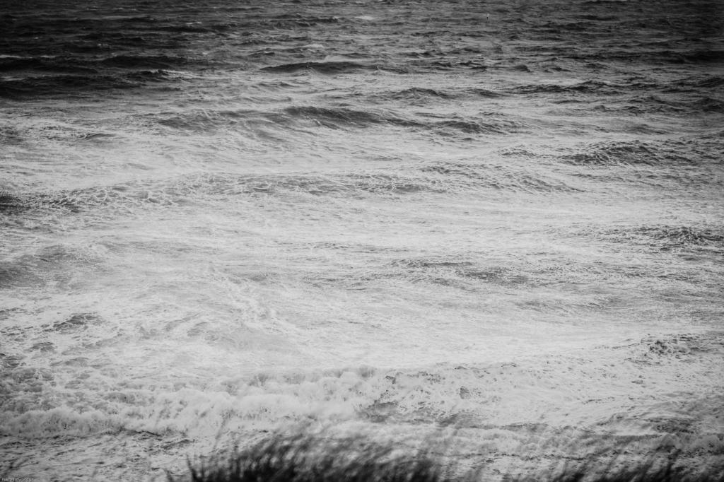 The Cold Sea