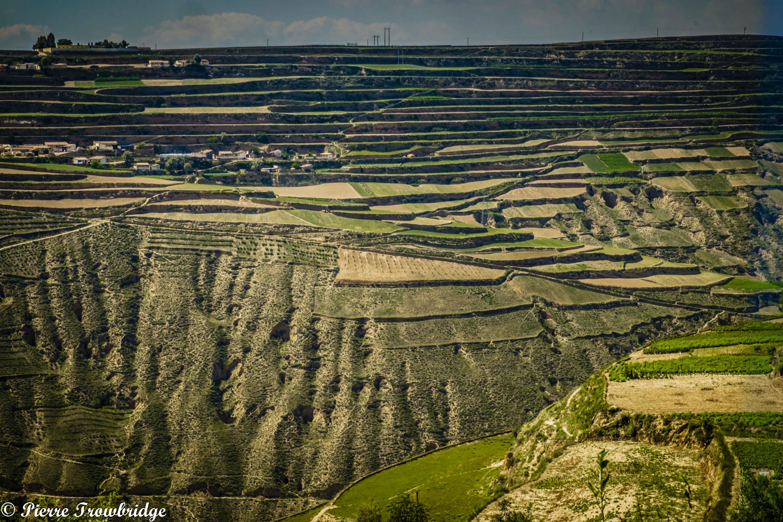 Gansu Terraces
